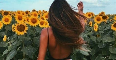"""This """"Secret"""" Sunflower Field In Vancouver Is Going To Be"""