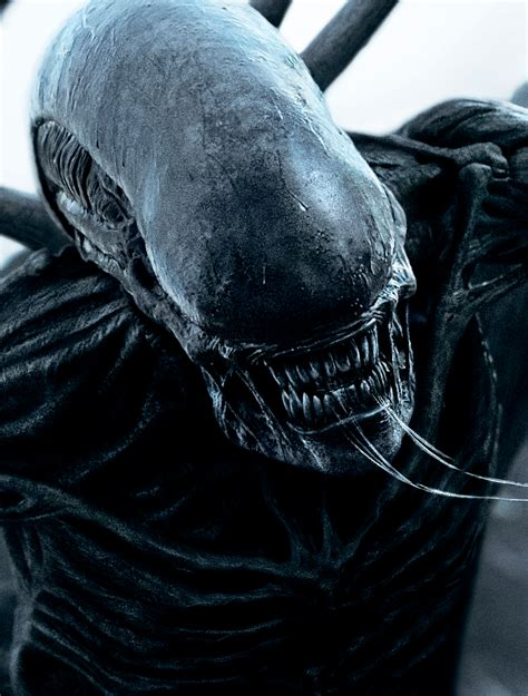 Wallpaper Alien: Covenant, HD, Movies, #7469
